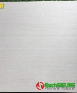 Đá bóng kiếng 80×80 Á Mỹ TC6511