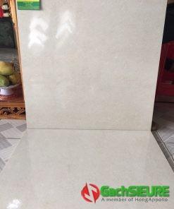 Gạch 60×60 men bóng xà cừ lát nền giá rẻ