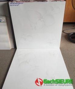 Gạch giá rẻ 60×60 cmc lát nền bình chánh