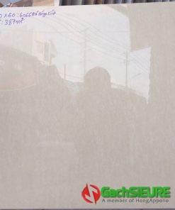 Gạch lát nền 60×60 catalan bóng kiếng giá rẻ bình chánh