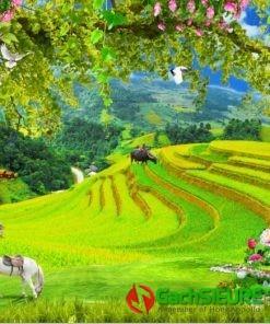 Gạch tranh phong cảnh quê hương trên vùng cao cảnh đẹp 178